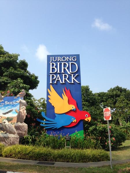 Jurong Bird