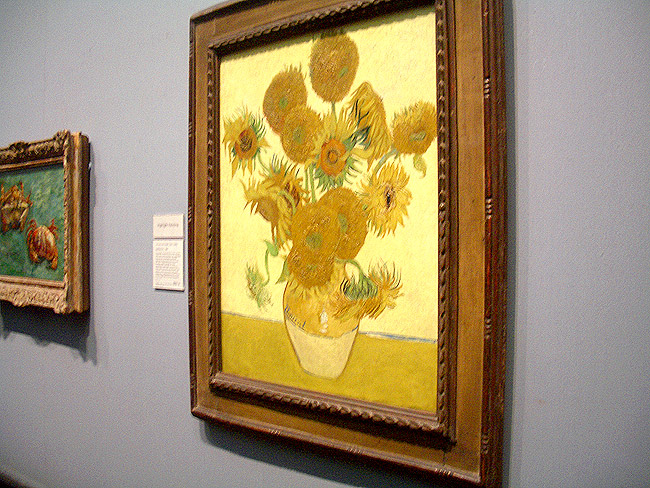 National Gallery_Sunflower