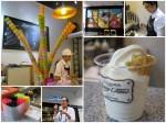 Honey Creme ไอศกรีม Soft Serve หนึ่งในผู้บุกเบิกไอศกรีมรวงผึ้ง- Taipei, Taiwan