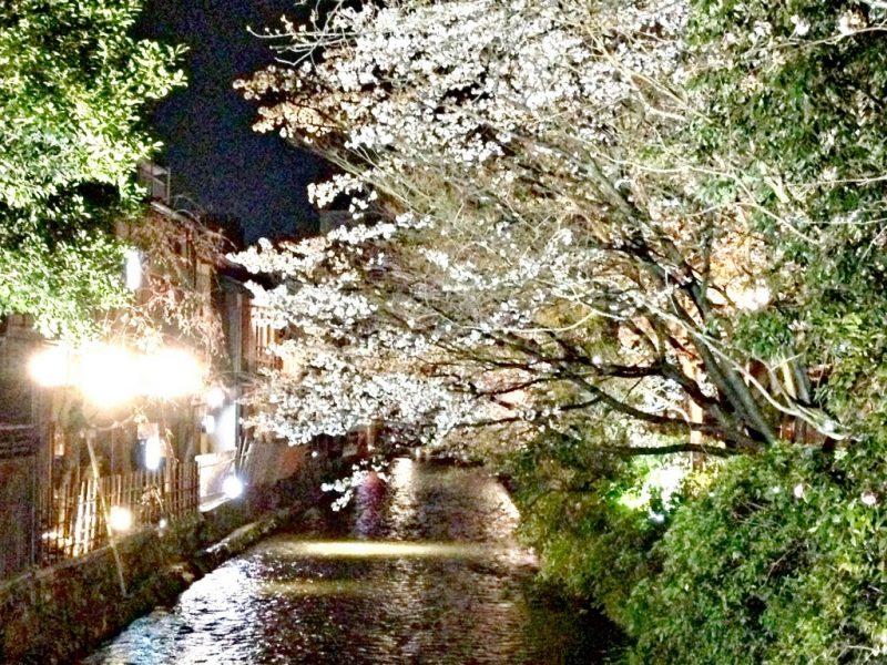 \Gion ยามค่ำคืน (17)_Fotor\