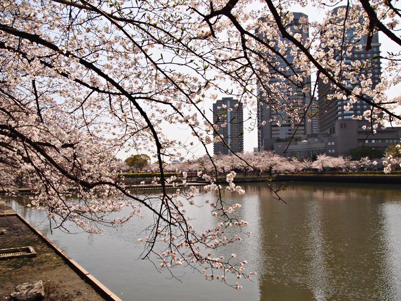 รางวัลของการเดินทาง : Kema Sakuranomiya Park, Osaka