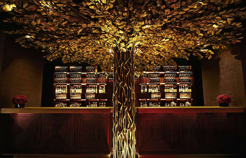 Banyan by the Bar