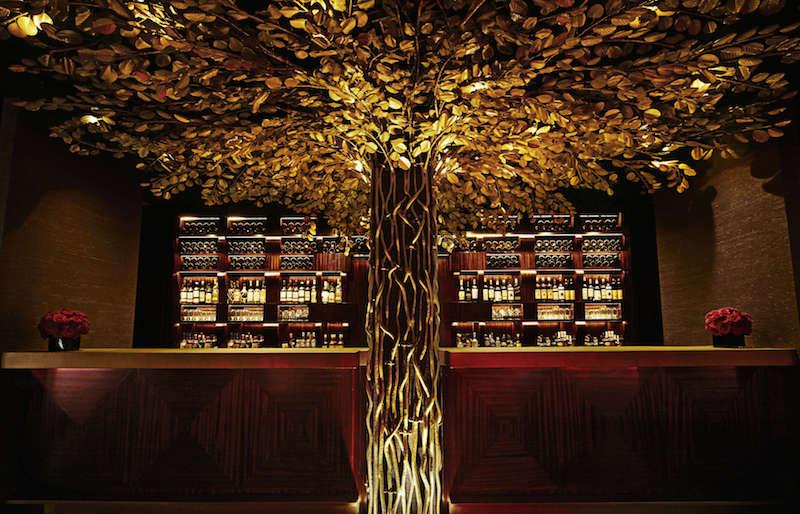 Banyan by the Bar
