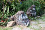 สมดุลของชีวิตในใจกลางฮ่องกง : สวนสัตว์และสวนสาธารณะสีเขียว – ฮ่องกง